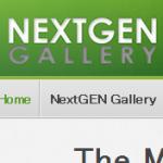 WordPressのプラグインNextGEN GalleryがResponsiveテーマで不具合