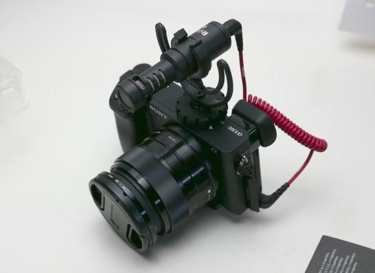 P1130031
