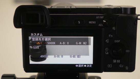 P1130055