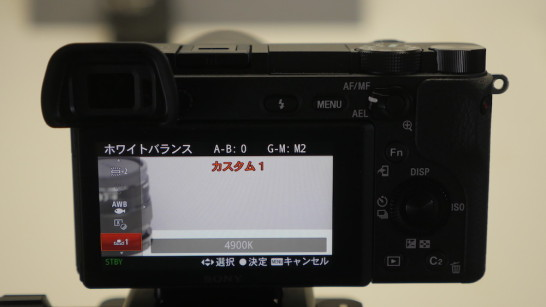 P1130058