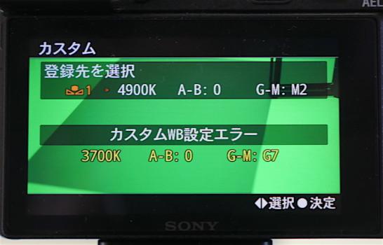 P1150014