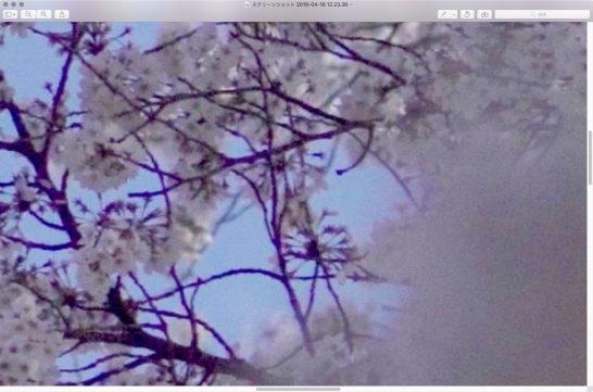 スクリーンショット 2016-04-16 12.24.18
